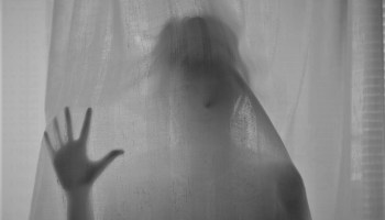 Ghost behind the curtain, article on Brown Lady of Raynham Hall
