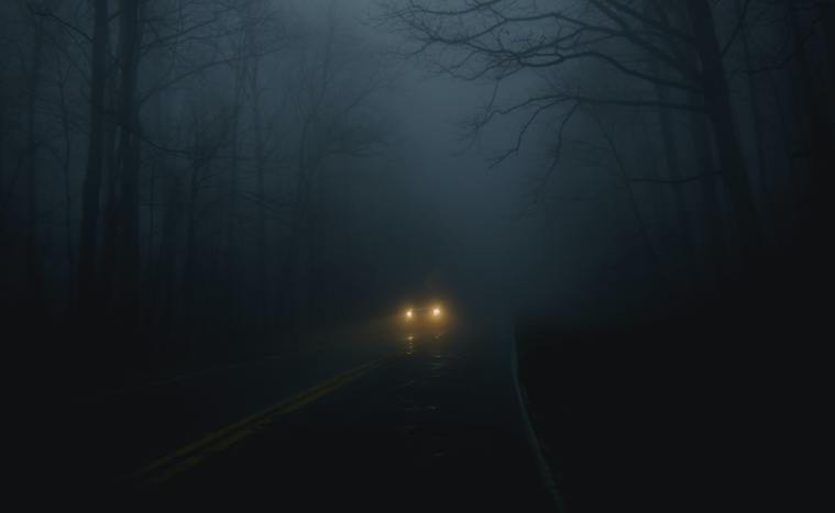 One car driving on an empty road in the night through a creepy forest