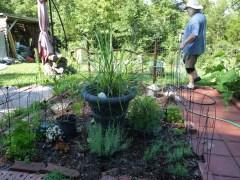 Herb Garden. Much work still to do.