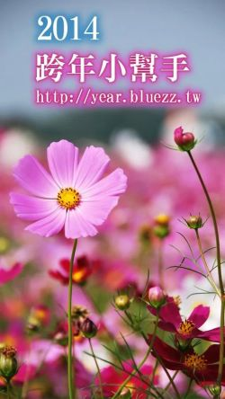 happy_new_year_2014_000