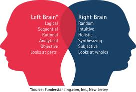 Middle Path Between Being Left & Right Brained