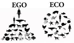What Ego Trip?