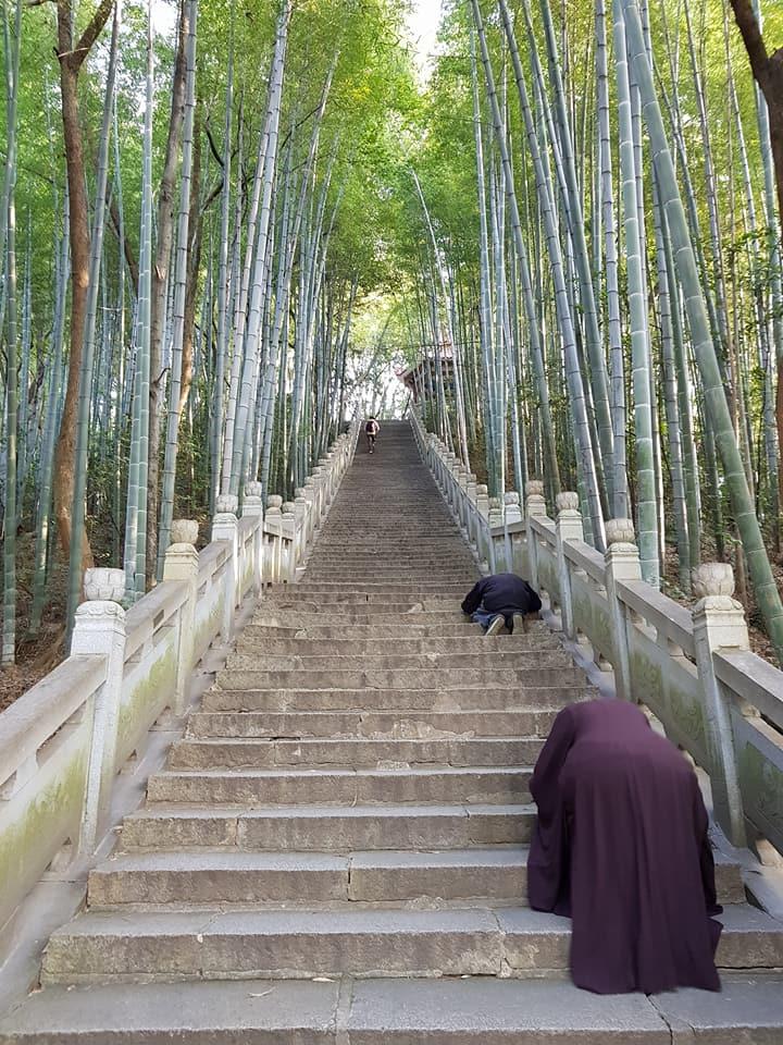 (7) Donglinsi Pilgrimage & Retreat