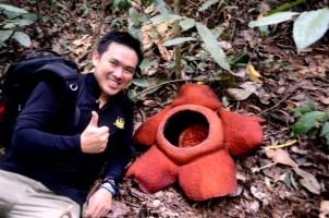Rafflesia Trek: Proof that the flower is bigger than the human head