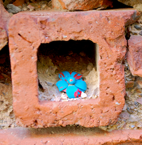 A Little Niche in the Patio Wall