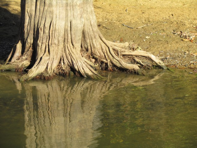 10-11-lick-creek-to-swallow-island-147