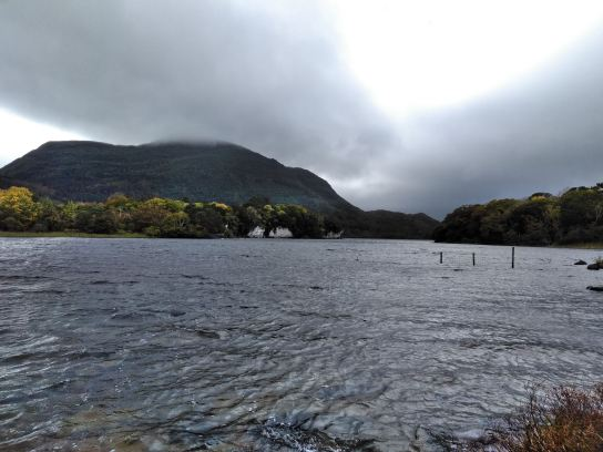 lake at muckross house_moonshine in a teacup