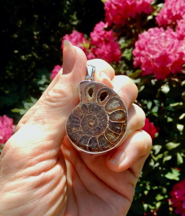 Ammonite LG Pendant