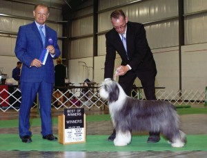 Bella's New Championship Win photo, handled by Mark Bettis & Lynn Meyer
