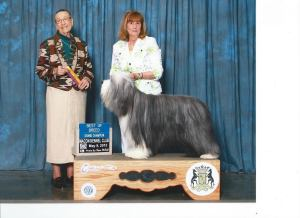 Swagger, new GCH