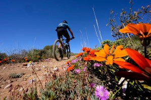 The Ride2Nowhere, which is an individual mountain bike event, will offer a ride for everyone, when it takes place in McGregor, Western Cape, from September 11 to 12. Photo: Supplied