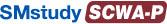Certified Web Analytics Professional (SCWA-P)