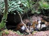 Ruisseau de Follezou