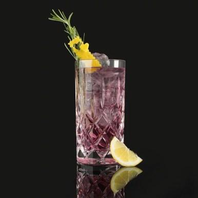 MOORGIN - Gin aus Kolbermoor PROVENCE MOORGIN & TONIC