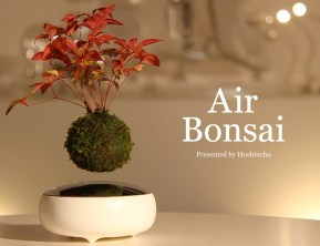 air-bonsai-02