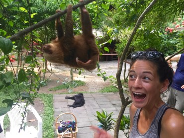 Hangout with a sloth (Nov. 2015)