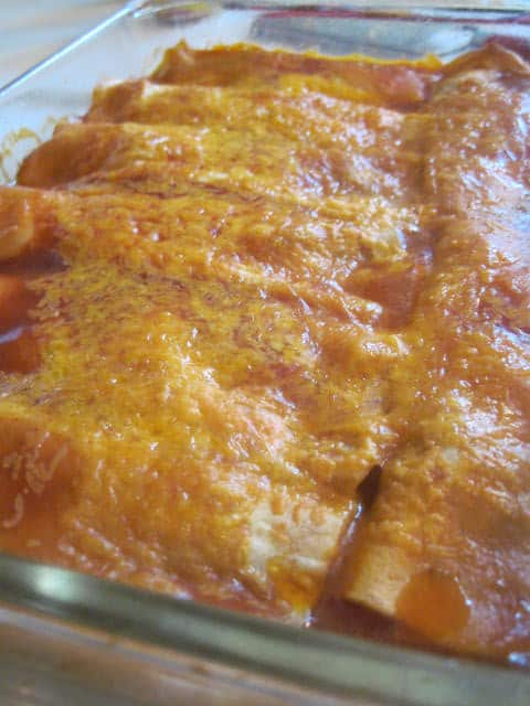 Easy Cheesy Beef Enchiladas
