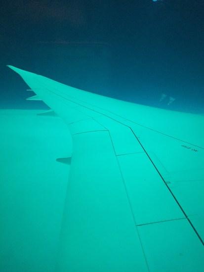 787 Window Fully Dim