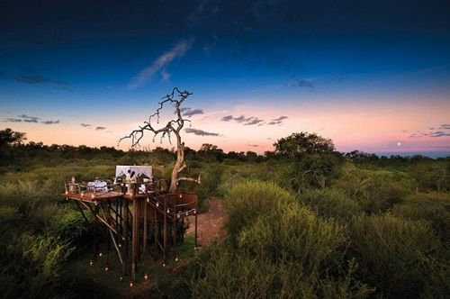 Lions Sands Game Reserve 02