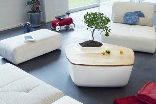 Mesa con una planta integrada