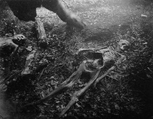 esqueleto en el bosque