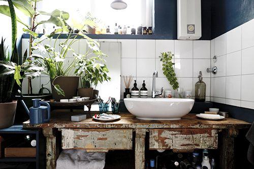 baño campo con plantas