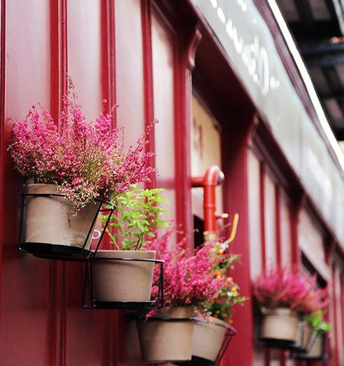 macetas exterior fachada restaurante triciclo madrid