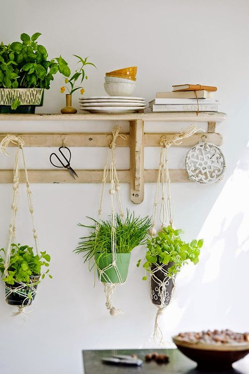 colgados macetas macrame tendencia decoracion