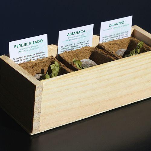 kit autocultivo reseta plantas aromaticas huertos urbanos