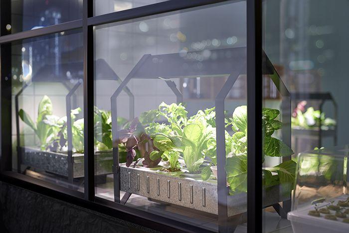 ikea modulo jardineria