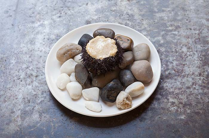erizos de mar restaurante fismuler