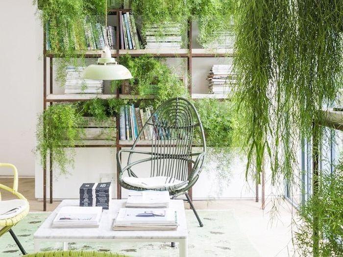 estanteria plantas interior