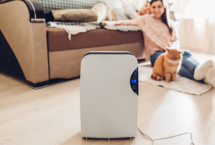 7 purificadores de aire que limpian tu hogar de virus y bacterias