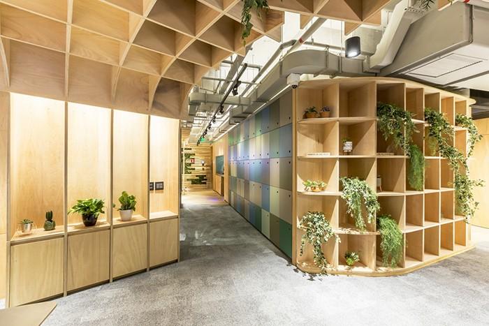 IT'S Informov oficina diseño biofílico plantas