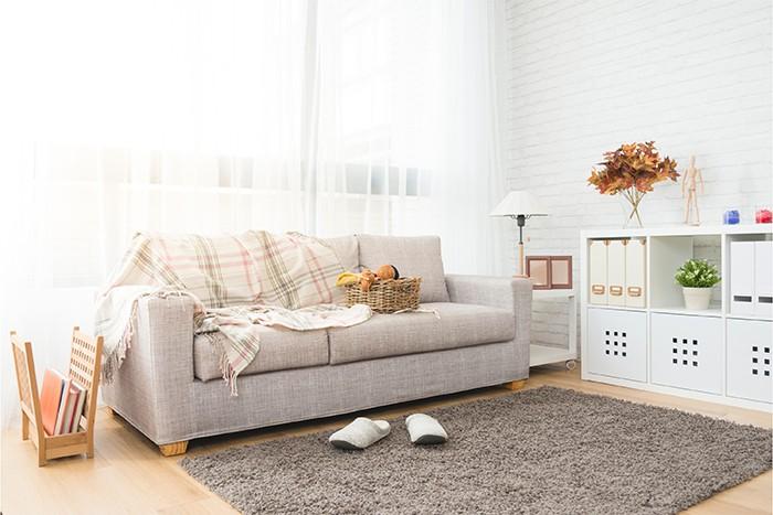 salón estilo sencillo con alfombra de pelo cómoda