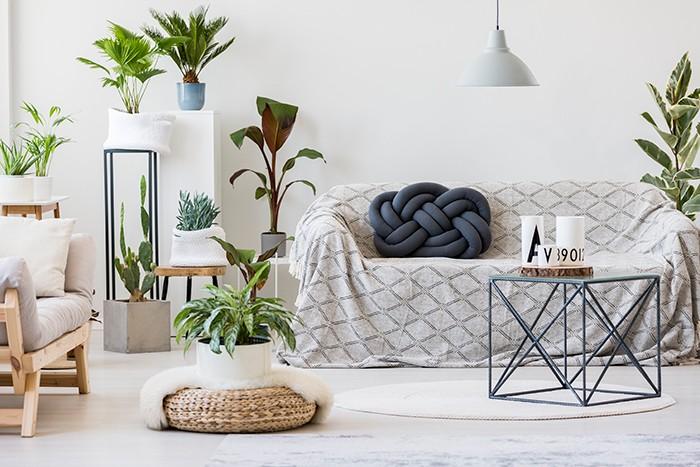 sala de estar con sofá con sobrecama y decoración plantas