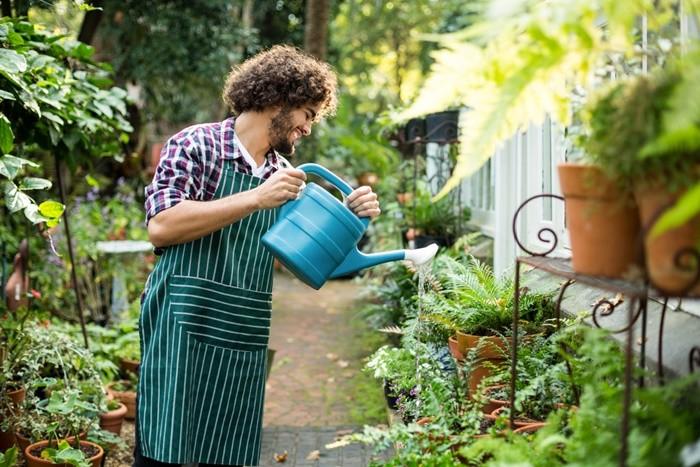 hombre regando jardin plantas