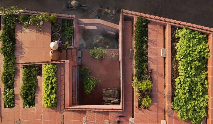 tejado plantas huerto rojo
