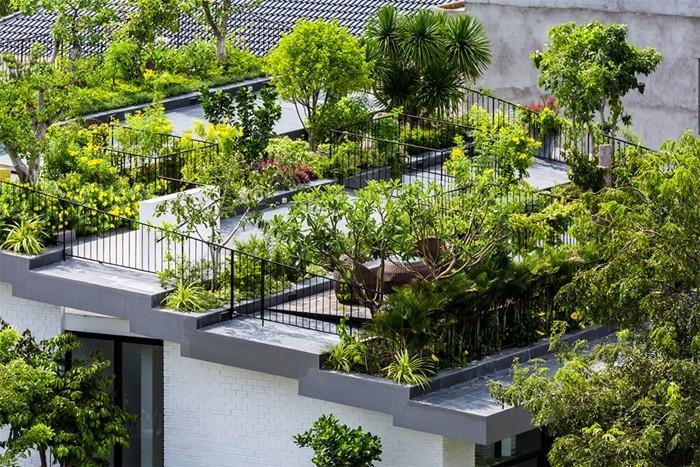 arboles flores arbustos tejado escalonado