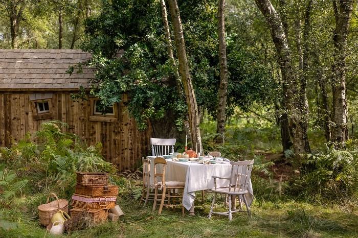 Picnic en el bosque de la casa de winnie de pooh con Airbnb