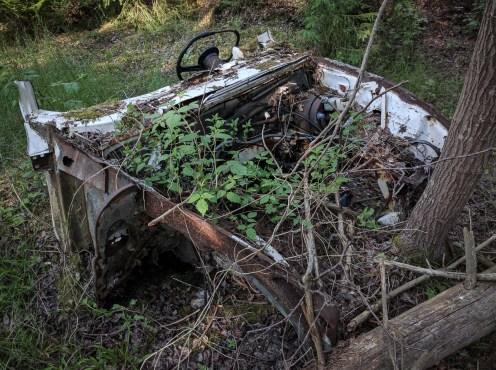 Miljöbil ute i skogen
