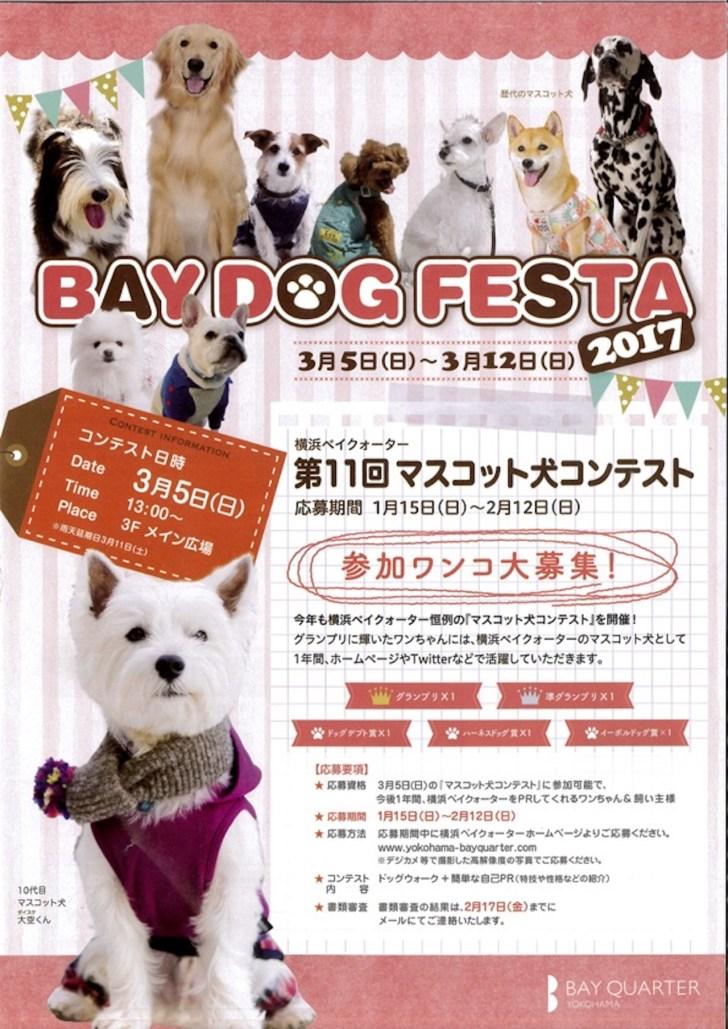 baydog2017