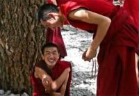 Worse than a Clown Monks Story ZenStories Enlightenment