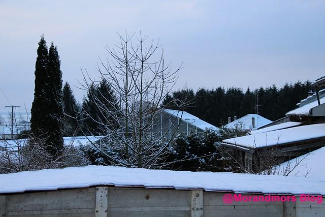 Ode à la neige Mors 1