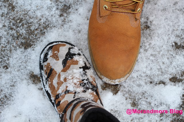 Ode à la neige Mors 21