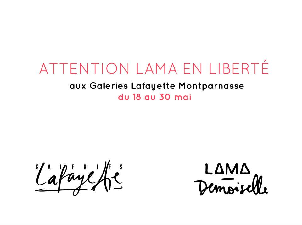 Lama demoiselle Montparnasse
