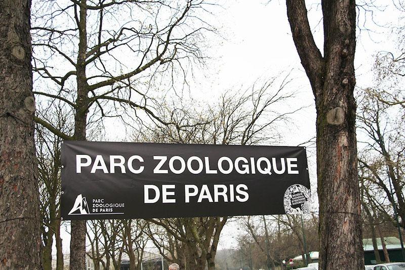 Morandmors_Zoo de Vincennes _1