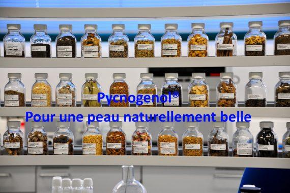 Pycnogenol® : Pour une peau naturellement belle