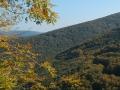 Podzim na Studeném vrchu.