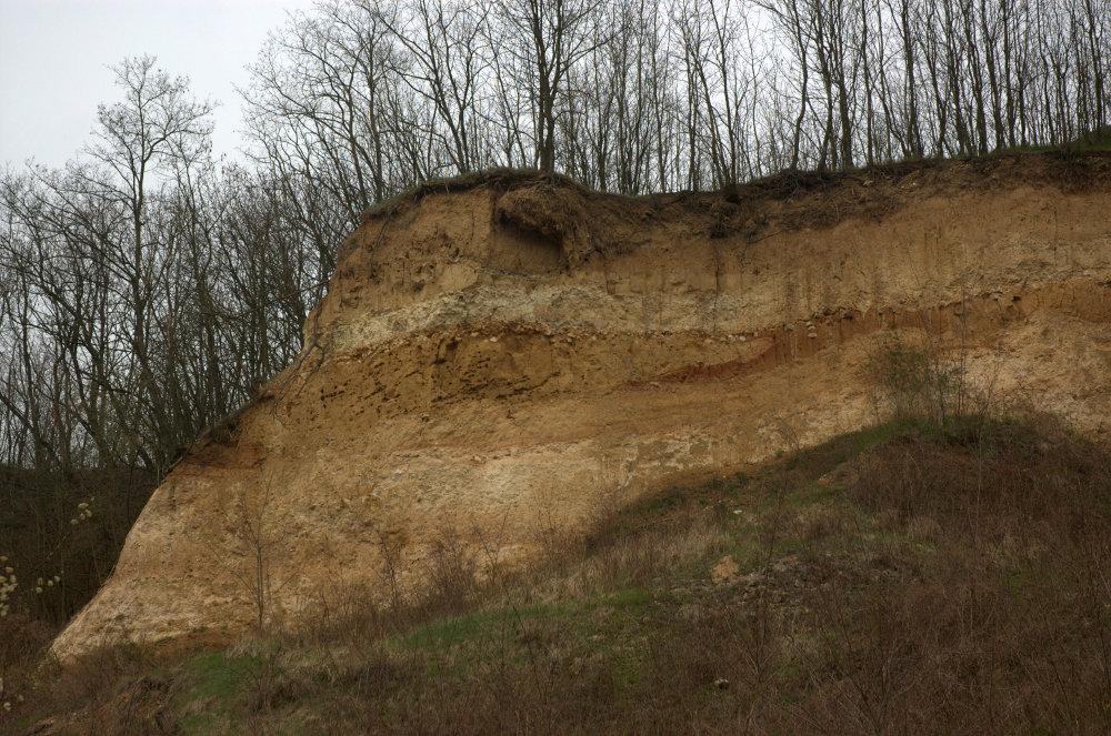 Kurovický lom – severozápadní stěna lomu je jedinečnou ukázkou sekvencí eolických sedimentů a fosilních půd.